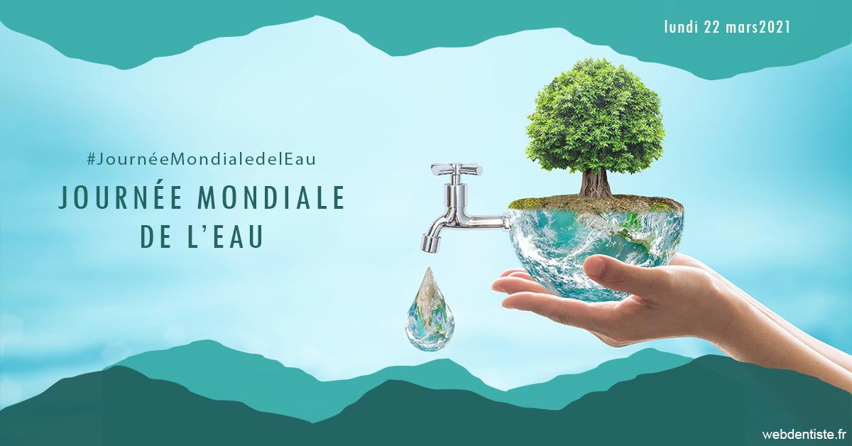 https://dr-potard-marie.chirurgiens-dentistes.fr/Journée de l'eau 1